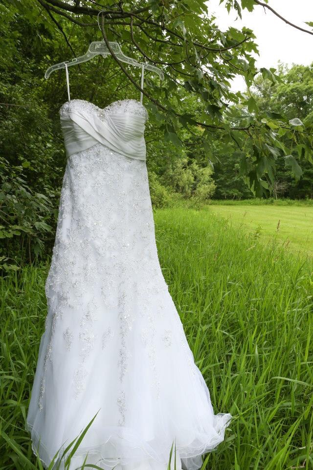 Wedding dress hanging from a tree. Wedding photography ideas.